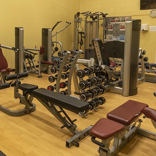 masc-gym2-500