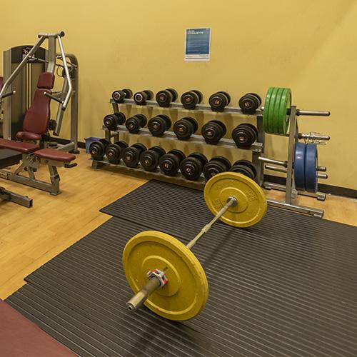masc-gym3-500